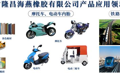 四川省隆昌海燕橡胶有限公司