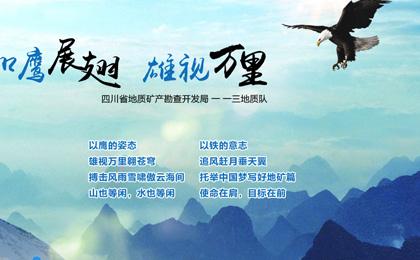 四川省地质矿产勘查开发局一一三地质队