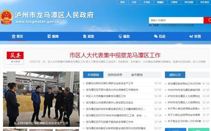 龙马潭区政府网站